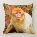 cute and curious monkey pillows