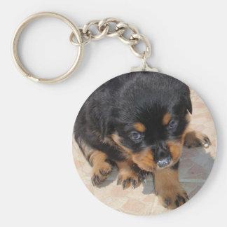 Cute and Fluffy Rottweiler Puppy Keychain