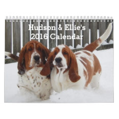 Cute And Funny Basset Hound Calendar For 2016 at Zazzle