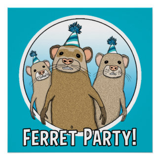 Cute and Funny Ferret Party Poster