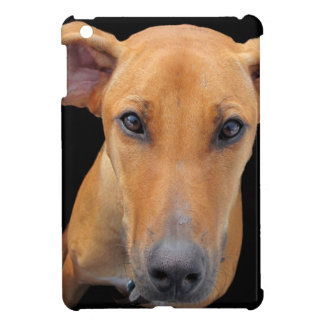 Cute and Lovable Rhodesian Ridgeback Dog iPad Mini Covers