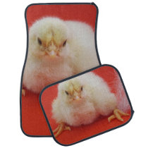 cute animal chick chicken feather red cuddly cute car floor mat