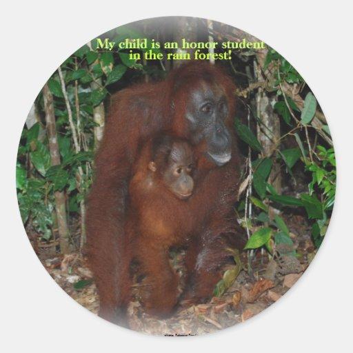 Cute animal orangutan jungle family classic round sticker for Classic jungle house for small animals