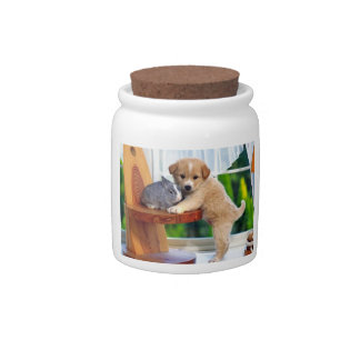 Cute Animals Cookie Jar Candy Dishes