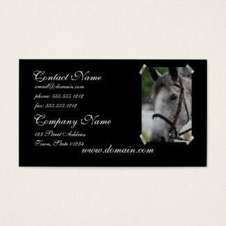 Cute Appaloosa Horse Business Card