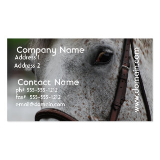 Cute Appaloosa Horse Business Card