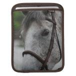 Cute Appaloosa Horse iPad Sleeve