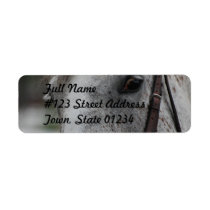 Cute Appaloosa Horse Mailing Label