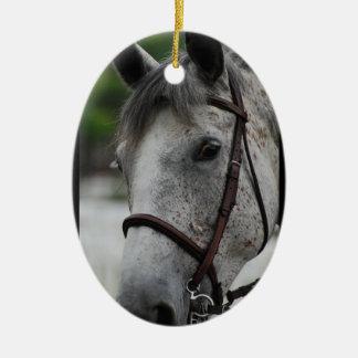 Cute Appaloosa Horse Ornament