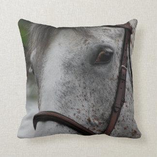 Cute Appaloosa Horse Pillow