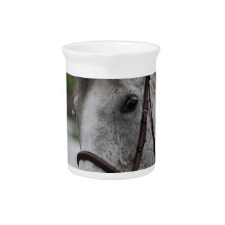 Cute Appaloosa Horse Pitcher