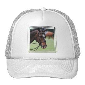 Cute Arabian Horse Baseball Hat