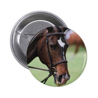 Cute Arabian Horse Pin