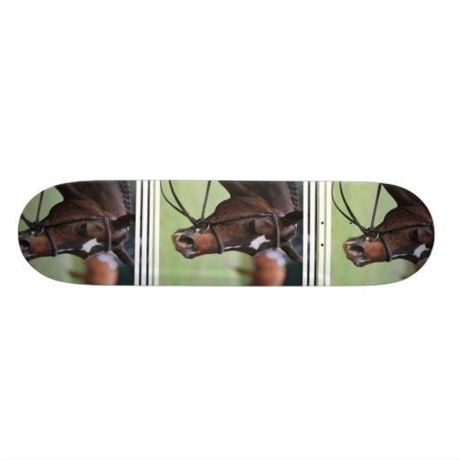 Cute Arabian Horse Skateboard