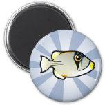 Cute Arabian Picassofish Refrigerator Magnet