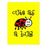 Cute as a Bug Post Card