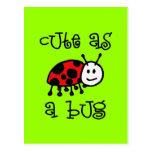 Cute as a Bug Post Cards