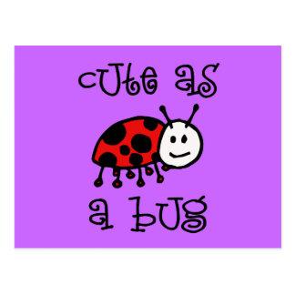 Cute as a Bug Postcard