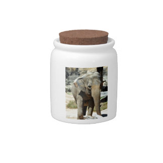 Cute Asian Elephant Candy Dishes