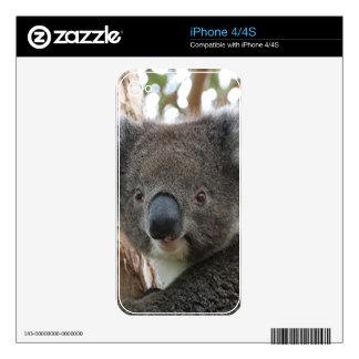 Cute Australian koala 2 iPhone 4S Skins