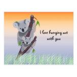 Cute Australian Koala Bear Postcard