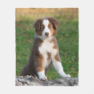 Cute Australian Shepherd Dog Puppy, comfort Fleece Blanket