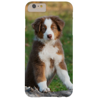 Cute Australian Shepherd Dog Puppy Phonecase Barely There iPhone 6 Plus Case