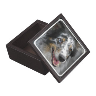 Cute Australian Shepherd Premium Gift Box