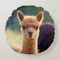 Cute Baby Alpaca Round Pillow