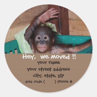 Cute Baby Animal Return Address Labels Classic Round Sticker