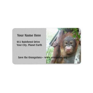 Cute Baby Animals Custom Address Labels