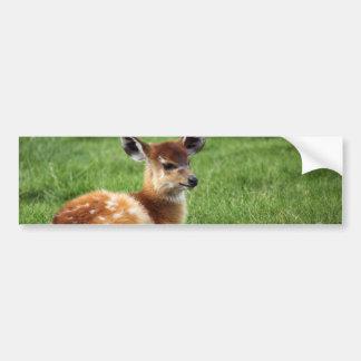 Cute Baby Antelope Bumper Sticker