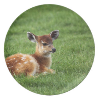 Cute Baby Antelope Party Plates