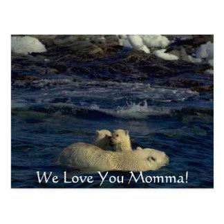 Cute Baby Bears & Mother Postcard