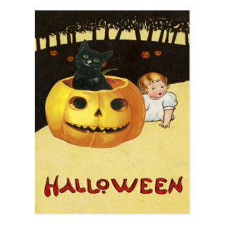 Cute Baby Black Cat Jack O Lantern Pumpkin Forest Post Cards