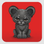 Cute Baby Black Panther Cub on Red Square Sticker