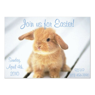 Cute Baby Bunny Easter Invitations