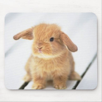 Cute Baby Bunny Happy Easter Design Mouse Pad