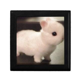 Cute baby bunny keepsake box