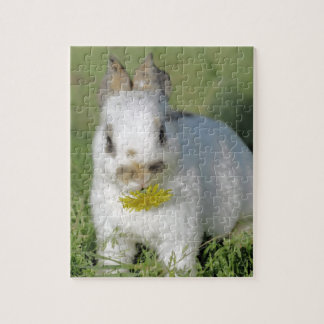 Cute Baby Bunny Rabbit Eating Flower Jigsaw Puzzle