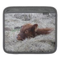 Cute Baby Calf, Farmyard Animal iPad Sleeve