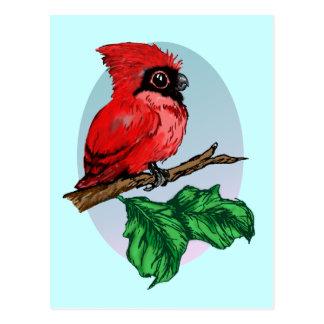 Cute Baby Cardinal Postcard