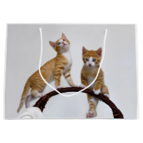 Cute Baby Cats Kittens Funny Gym Photo Wrapbag Large Gift Bag