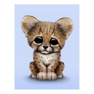 Cute Baby Cheetah Cub on Light Blue Postcard