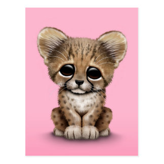 Cute Baby Cheetah Cub on Pink Postcard