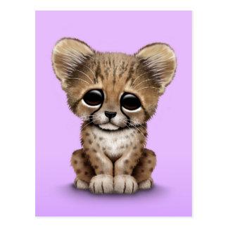 Cute Baby Cheetah Cub on Purple Postcard