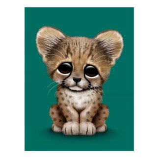Cute Baby Cheetah Cub on Teal Blue Postcard