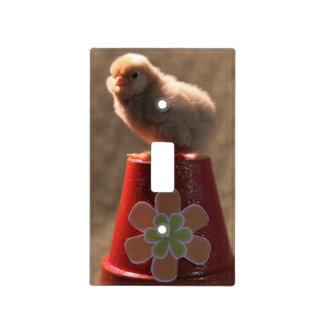 Cute Baby Chick Lightswitch Plate