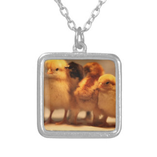 Cute Baby Chicks Silver Plated Necklace