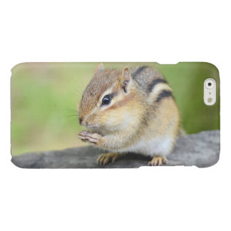 Cute Baby Chipmunk Snacking Glossy iPhone 6 Case